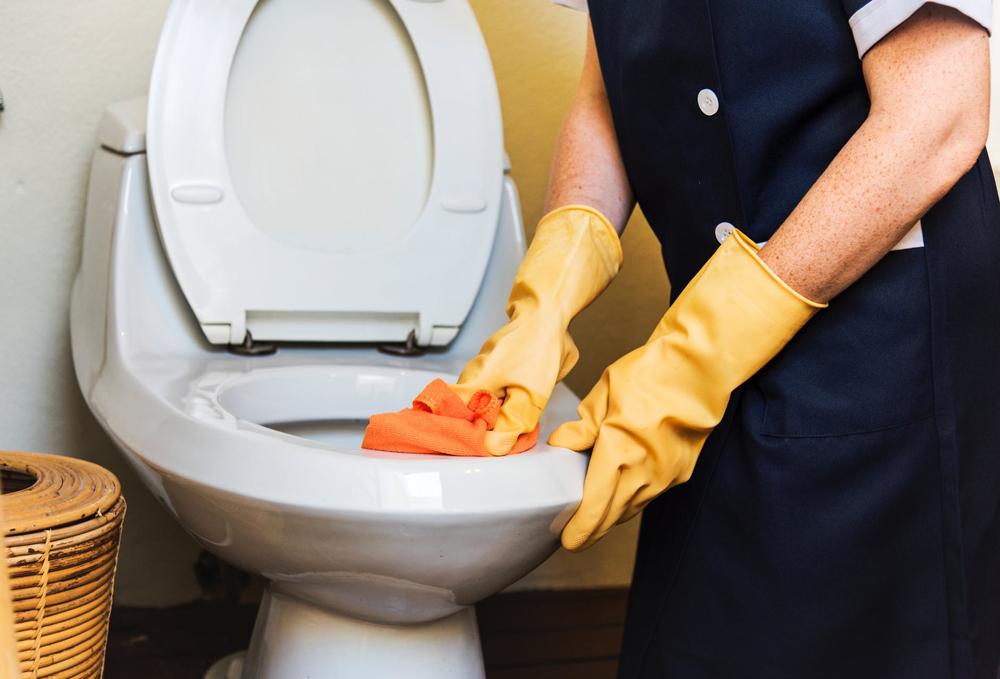 Limpieza Domestica en Panama