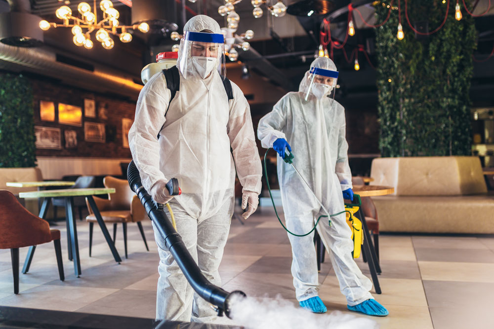 Professional disinfection service in Panama